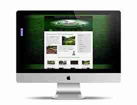 websitedesignteaser